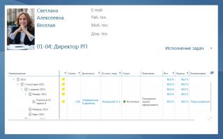 KPI-EXE: Исполнение задач. Описание функциональности модуля